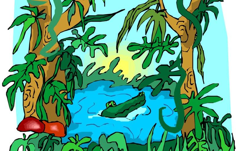 junglefødselsdag